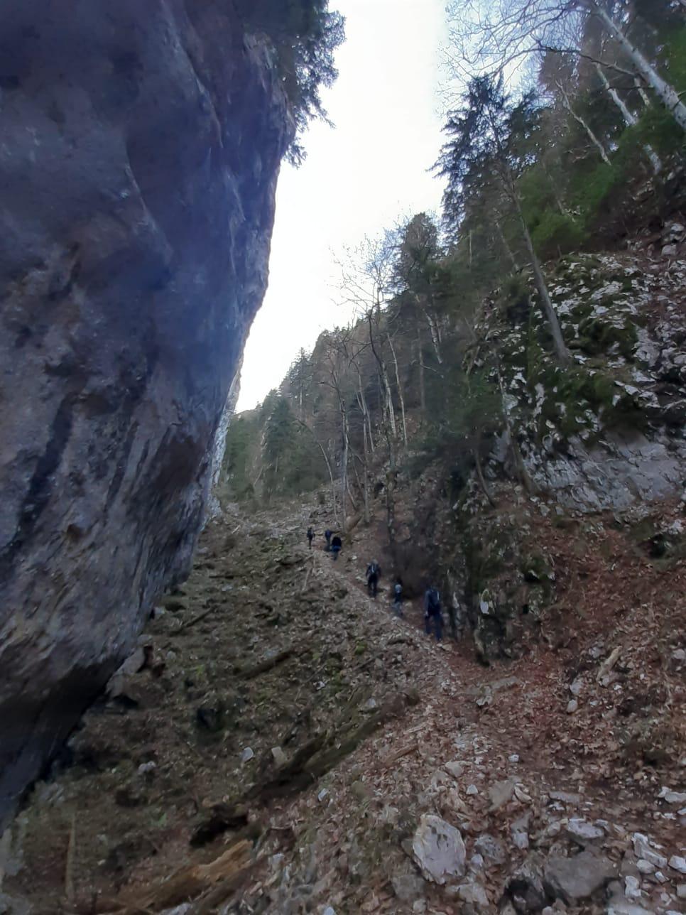 excursie de o zi in Piatra Craiului - Valea Crapaturii